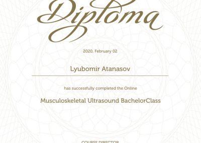 Diploma_msk_bachelorclass
